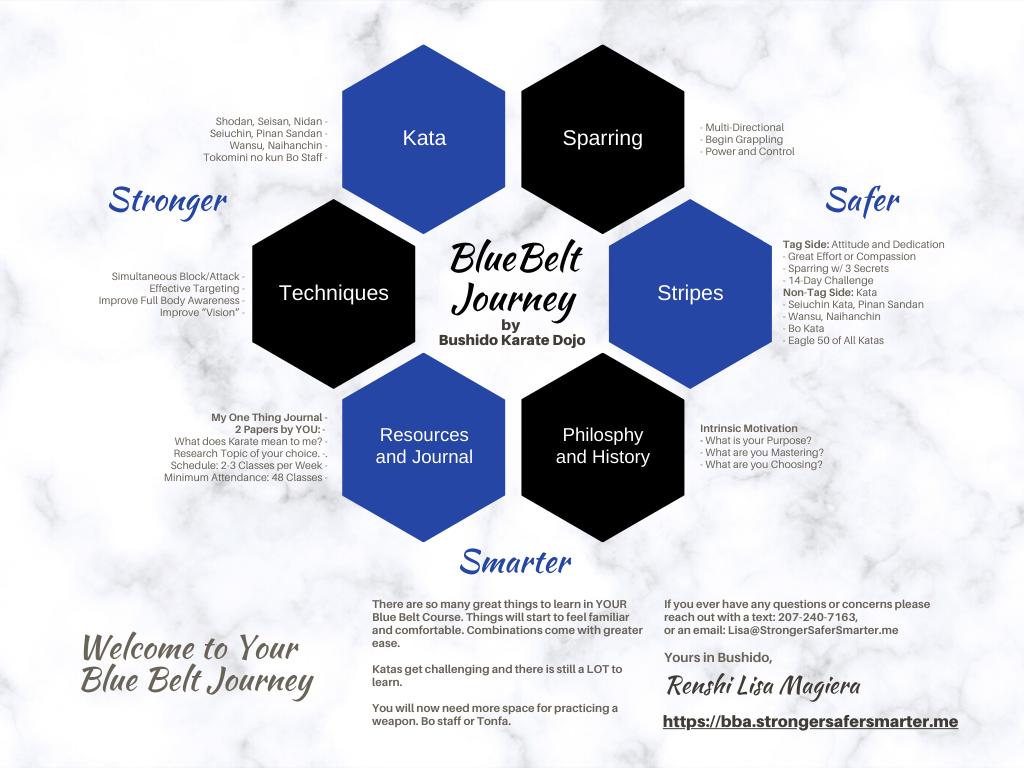 Blue Belt Overview