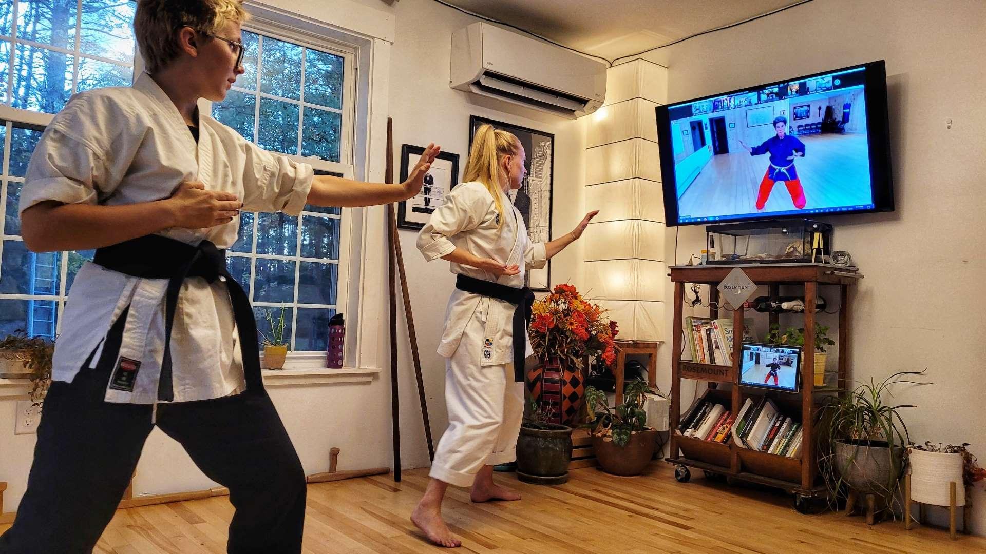 Karate at Home Shuto